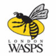 London Wasps Rugby Club