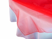 Red Organza Overlay