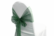 Sash Organza Hunter Green
