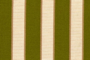 Gold and Lime Stripe