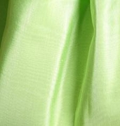 Apple Green Bengaline Napkin