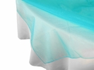 Turquoise Organza Overlay