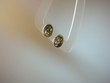 Green Baltic Amber Oval Sterling Earrings