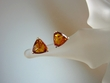 Classic Honey Baltic Amber Sterling Silver Earrings