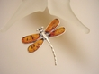 Honey  Baltic  Amber Sterling Silver  Dragonfly  Pin