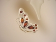 Butterfly  Honey  Baltic   Amber Sterling Silver  Brooch
