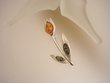 Tulip Multicolor Baltic Amber Sterling Silver Brooch