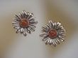Honey  Baltic  Amber & Sterling Silver Flower Earrings