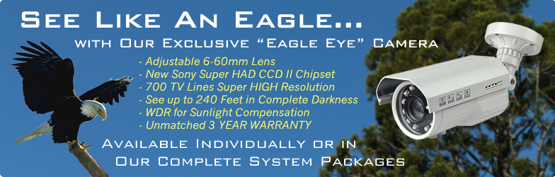 """EAGLE EYE"" (240 FOOT IN DARKNESS) ""PRO SERIES"" ""EAGLE EYE"" SUPER LONG RANGE WDR Complete 2 Camera Indoor/Outdoor Color Sony Super HAD CCD 700 Line Infrared Security Camera System"