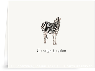 Zebra - Folded Note Cards
