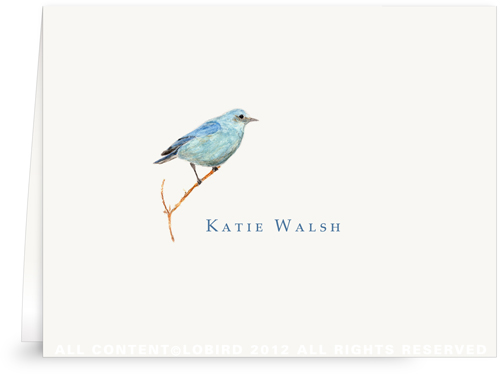 Mountain Blue Bird - Folded Note Card