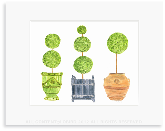 Pots with Topiary - collection 1- 8 x 10 Print in 11 x 14 Mat