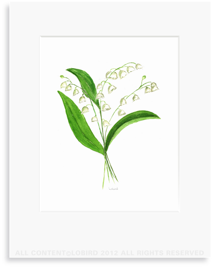 Lily of the Valley - Print 8x10