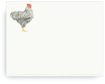 "Plymouth Rooster - Non-Personalized Note Cards (4.25"" X 5.5"")"
