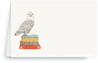 Snowy Owl on Stack of Books -  Place Cards