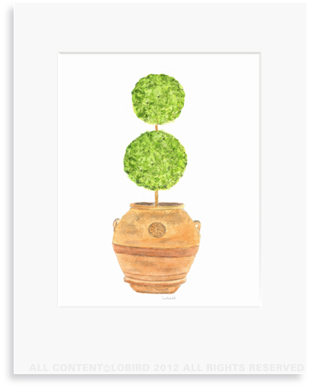 Antique Italian Terracotta - double ball Topiary - 8 x 10 Print in 11 x 14 Mat
