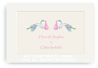 Twins-Flying Pink Storks - Enclosure Cards