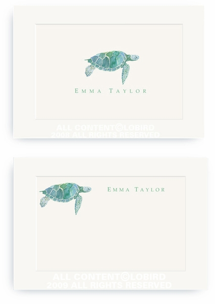 Sea Turtle - Enclosure Cards