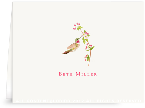 Ruby Throated Hummingbird -folded note cards