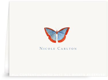 Butterfly - blue/red - Folded Note Cards