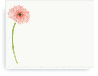 "Gerber Daisy - Non-Personalized Note Cards (4.25"" X 5.5"")"