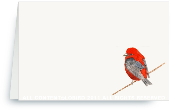 Scarlet Tanager - Place cards