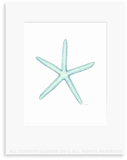 Starfish - Aqua - 8 x 10 Print in 11 x 14 Mat