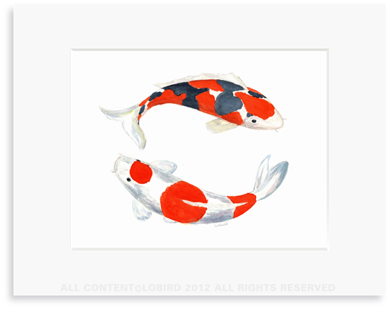 Double Koi - 8 x 10 Print in 11 x 14 Mat
