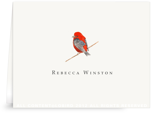 Scarlet Tanager - folded note cards