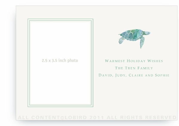 Sea Turtle - Photo Greeting Cards
