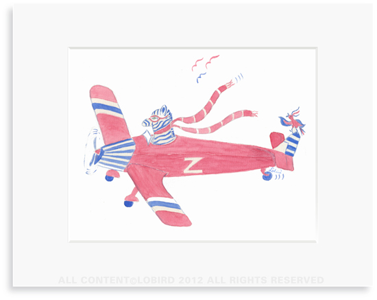 Zebra Flying Plane - 8 x 10 Print in 11 x 14 Mat