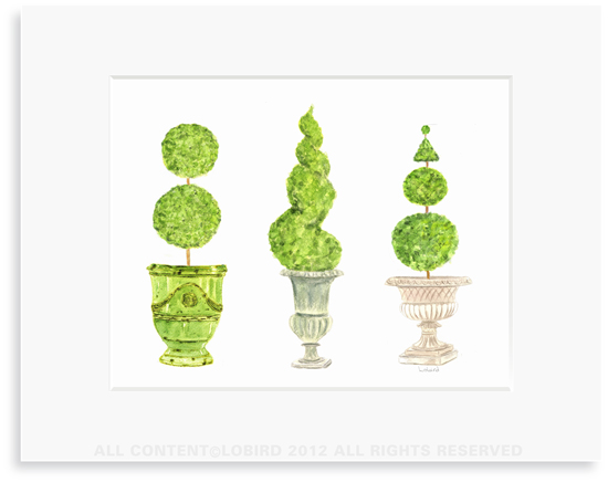 Pots with Topiary - collection 4- 8 x 10 Print in 11 x 14 Mat