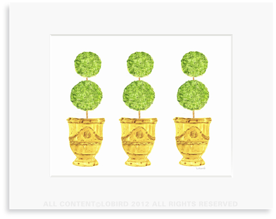 Trio of Yellow Anduze Pots with Topiaries - 8 x 10 Print in 11 x 14 Mat
