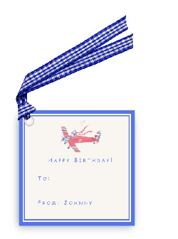 Zebra Flying Plane - Gift Tags