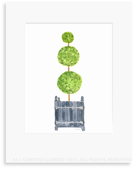 Antique Versailles Box  with Triple ball Topiary - 8 x 10 Print in 11 x 14 Mat