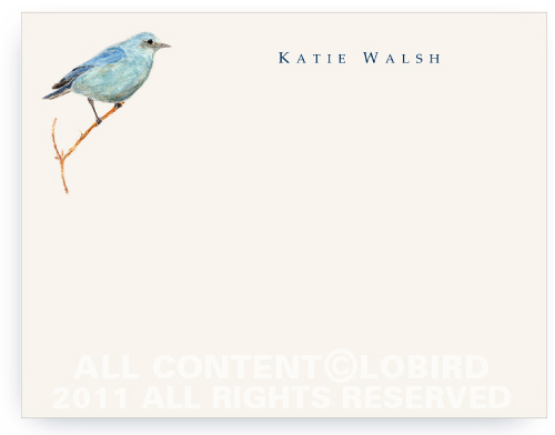 Mountain Blue Bird - Flat Note cards