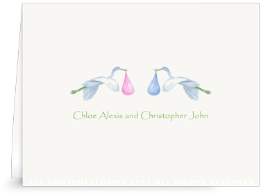 Twin Flying Pink/Blue Storks - Folded Note Cards