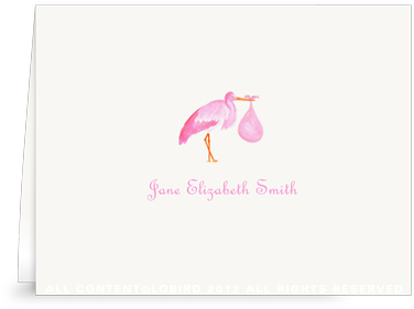 Pink Stork Standing - Folded Note Cards