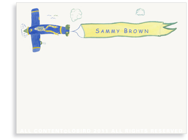 Lion Cub Flying Plane - Flat  Note cards