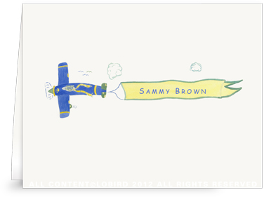 Lion Flying Plane - Folded Note Cards