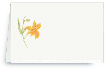 Peruvian Lily - Place cards