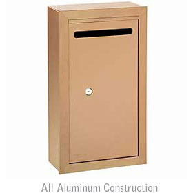 Salsbury industries 2260BP Letter Box-Slim-Surface Mounted-Brass Finish-Private Access-with (2) Keys