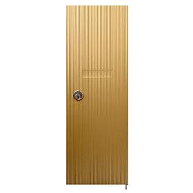 Salsbury industries 3551B Vertical Mailbox Door-Standard Replacement-Brass Finish-with (2) Keys