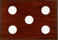 Maximum 5-Instrument Mahogany Panel
