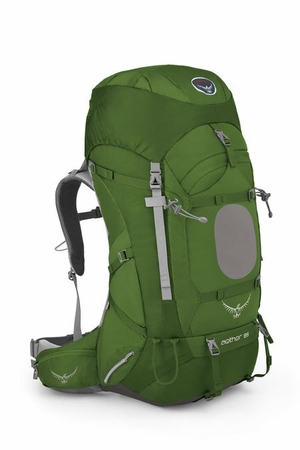 Osprey Aether 85 Bonsai Green