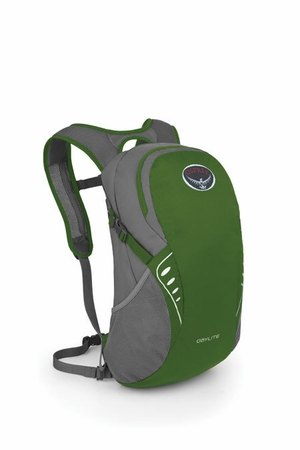 Osprey Daylite Fern Green  (close out)