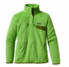 Patagonia Womens Re-Tool Snap-T Pullover Lotus Green: Aloe Green X-Dye (Autumn 2013)