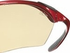 Julbo Trail Zebra Antifog Red