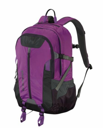 Patagonia Refugio Pack 28L Ikat Purple (Autumn 2013)