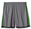 Patagonia Mens Strider Shorts Feather Grey (Spring 2013)